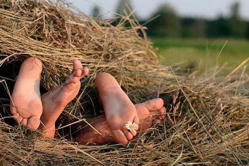 Чтобы снимать подобные ролики, жить можно даже на сеновале