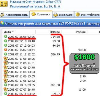 Активная работа принесла 1800 долларов за 20 дней