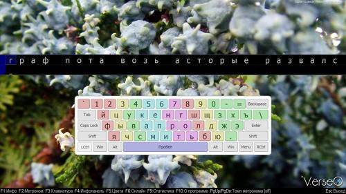 Программа для обучению слепому десятипальцевому методу печати на клавиатуре VerseQ