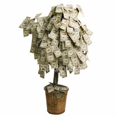 Пассивный доход, как и дерево, можно взрастить